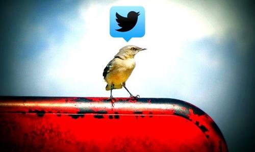 Ventajas de Twitter Promote Mode para negocios online